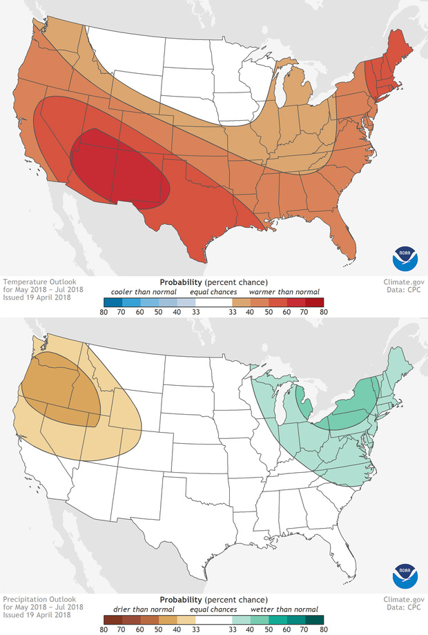 Early Summer Outlook