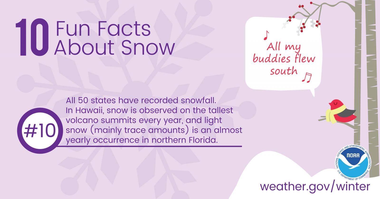 Snow Fun Facts